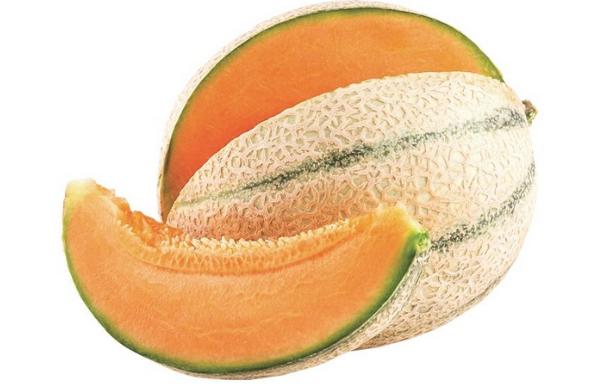 Melone Cantalupo F1