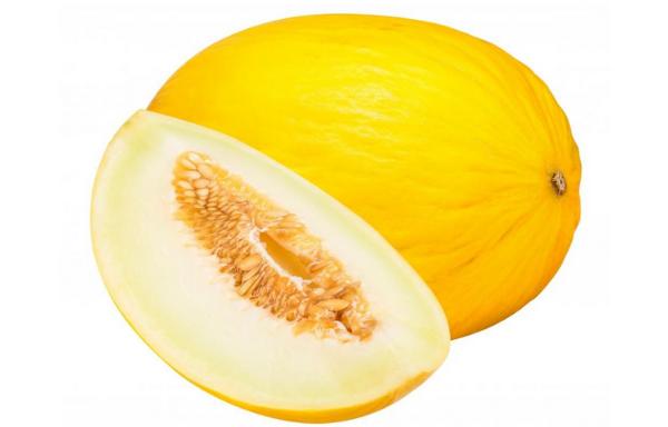 Melone Giallo F1