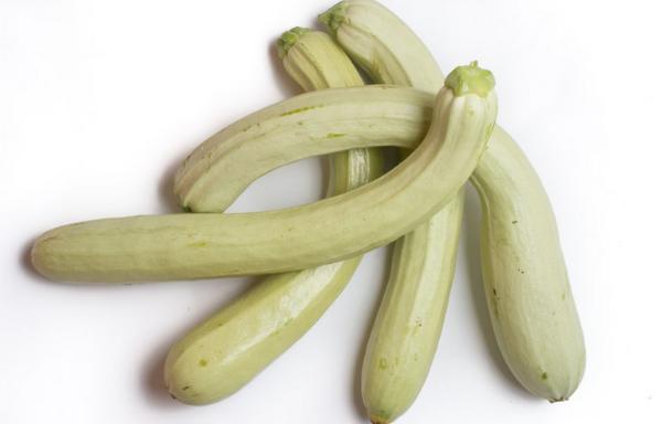 Zucchino Napoletano