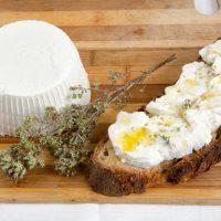Bruschetta alla ricotta e olio aromatizzato al tartufo bianco